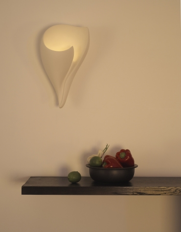 beautiful shell wall light, unlit